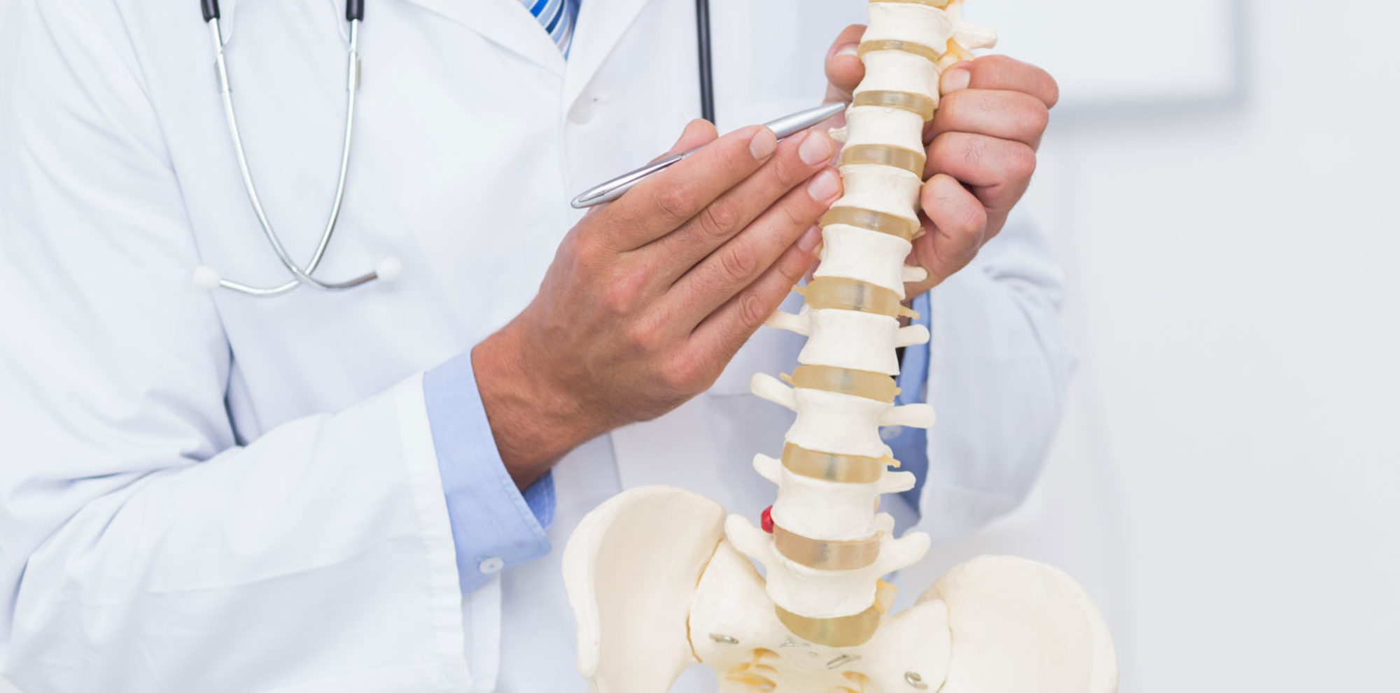 Dr L.E. Schmidt | Chiropractor